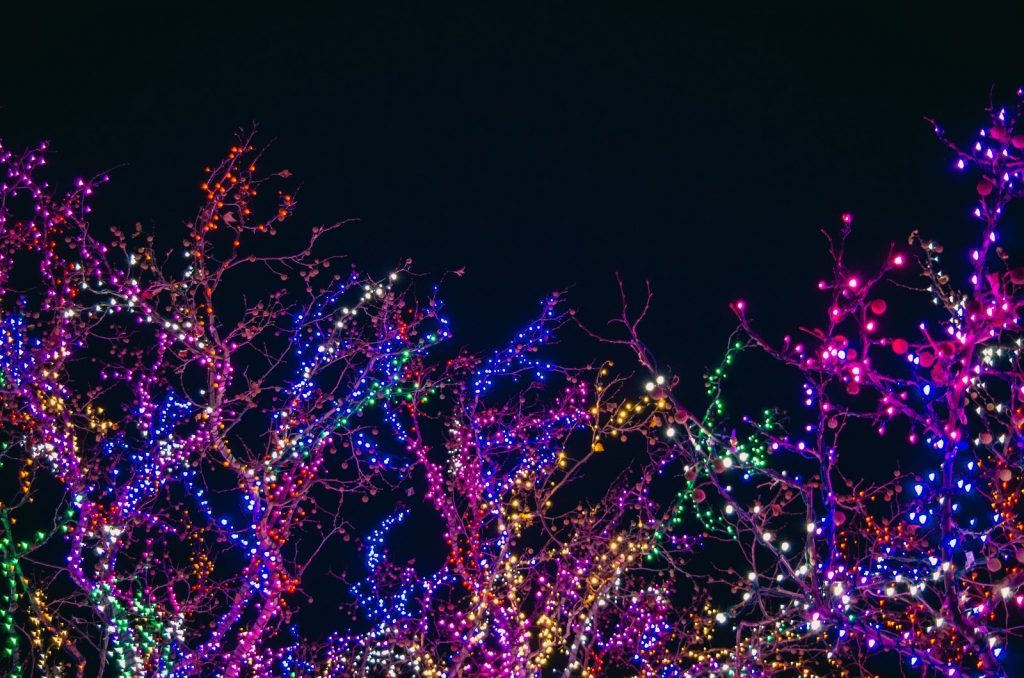 Colorful RGB lighting on tree branches